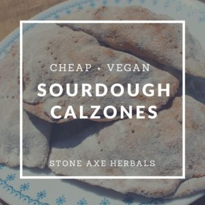 Easy and CHEAP Sourdough Calzones