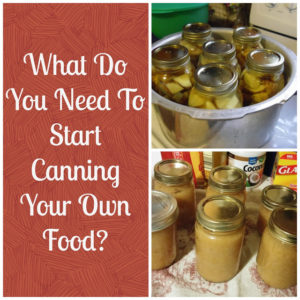 What Do You Need To Start Canning Your Own Food?