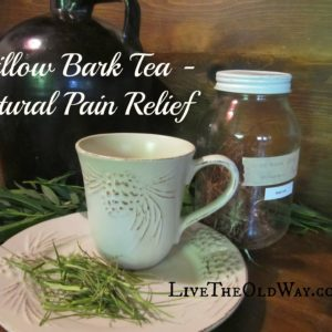 Willow Bark Tea – Natural Pain Relief