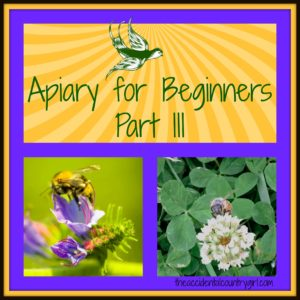 Apiary for Beginners: Part III