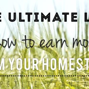 Ways to Earn Money on Your Homestead