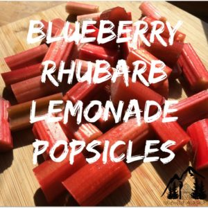 Blueberry Rhubarb Lemonade Popsicles