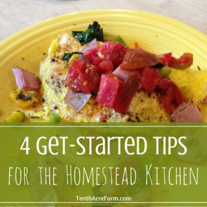 4 Get-Started Tips for the Homestead Kitchen