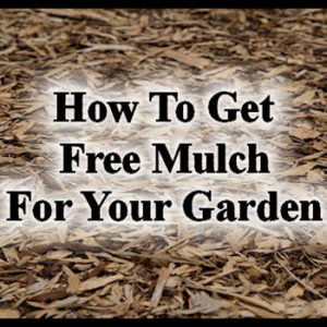How To Get Free Mulch For Your Garden
