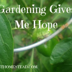 Gardening Gives Me Hope!