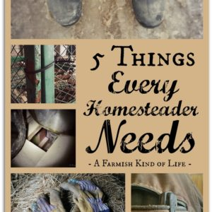 5 Essentials for Every Homesteader