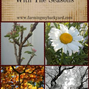 How To Live In Tune With The Seasons
