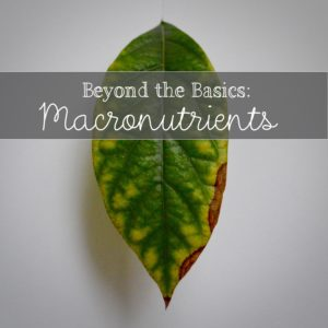 Beyond the Basics in the Garden: Macronutrients