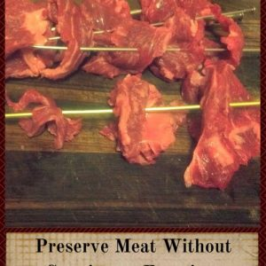Preserving Meat Without Canning Or Freezing by Making Oven Jerky
