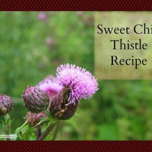 Foraging Foods: Sweet Chili Thistle Recipe