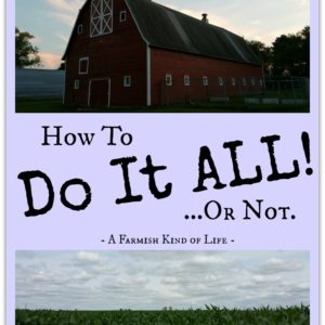 "8 Tips To Help A Homesteader ""Do It All"""