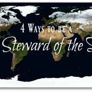 4 Ways to Be a Good Steward of the Earth
