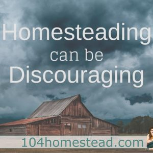 Because Homesteading Can Be Discouraging