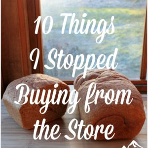 10 Things I Stopped Buying from the Store
