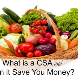 What is a CSA and How Can it Save You Money?