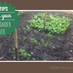 8 Tips for Your Best Garden Yet