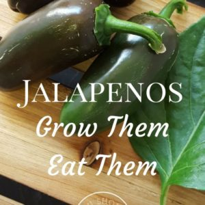 Jalapenos: Grow Them. Eat Them.