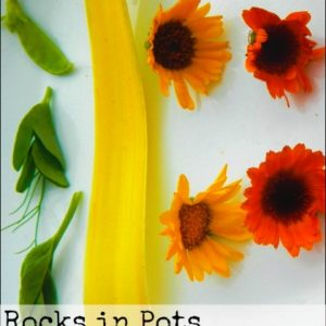 Rocks in Pots and Edible Flowers: Things My Grandmas Taught Me
