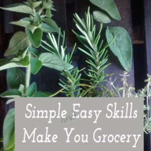 Simple and Easy Skills Make You Grocery Store Free