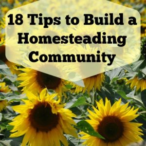 18 Tips to Build a Homesteading Community