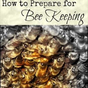 How to Prepare for Beekeeping