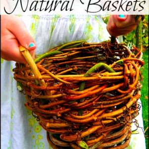 Make Your Own Plant Pots and Baskets