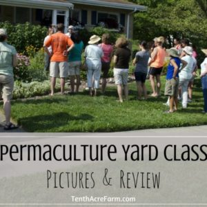 Permaculture Yard Class Pictures & Review
