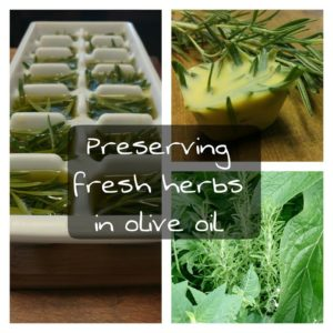 Preserving Fresh Herbs in Olive Oil