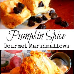 Gourmet Pumpkin Marshmallows