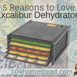5 Reasons to Love Excalibur Dehydrators