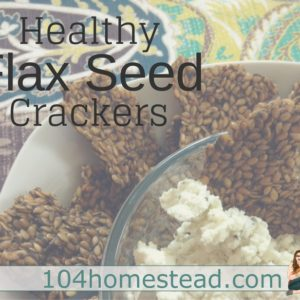 Healthy Flax Seed Crackers in the Dehydrator