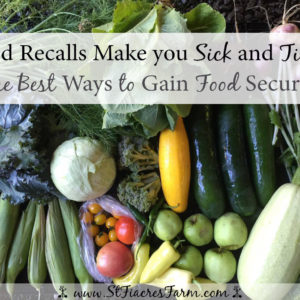 The Best Way to Gain Food Security
