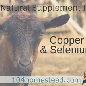 Kop-Sel: A Selenium Supplement for Goats