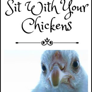 Sitting With Chickens: Why You Need to Do It