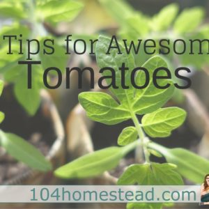 3 Tips for Awesome Tomatoes