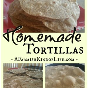 Make the Perfect Tortilla for Your Next Wrap!