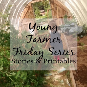 Young Farmer Fridays – The Chicken's Mistake
