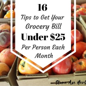 16 Tips to Get Your Grocery Bill Under $6.25 Per Person Each Week