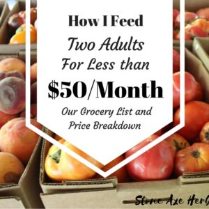 Our Grocery List: How I Feed Two Adults For Less Than $50/Month