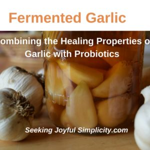 Fermenting Garlic and Five Ways to Use Fermented Garlic in Your Kitchen