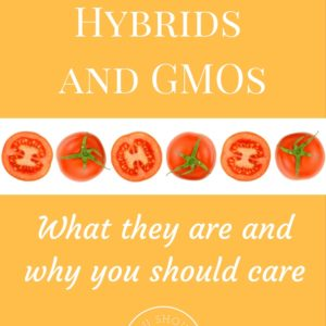 Heirlooms, Hybrids, and GMOs: What they are and why you should care