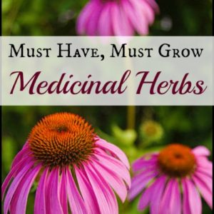 Must Have Must Grow Medicinal Herbs