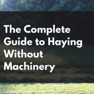 The Complete Guide to Haying Without Machinery