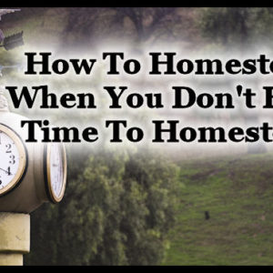 How To Homestead When You Don't Have Time To Homestead