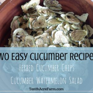 Two Easy Cucumber Recipes: Herbed Cucumber Chips & Watermelon Salad