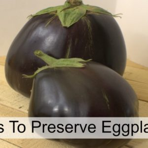 4 Ways To Preserve Eggplant