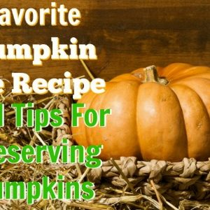 My Favorite Pumpkin Pie Recipe And Tips For Preserving Pumpkin