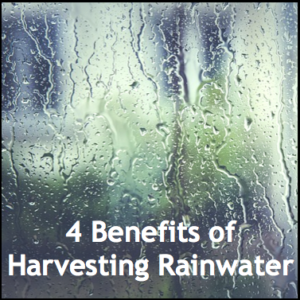 The Benefits of Harvesting Rainwater