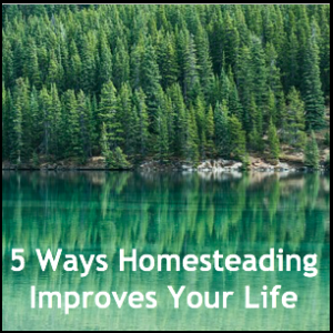 Life Improvements When You Homestead