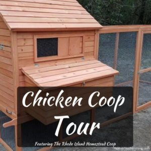 Chicken Coop Tour – Rhode Island Homestead